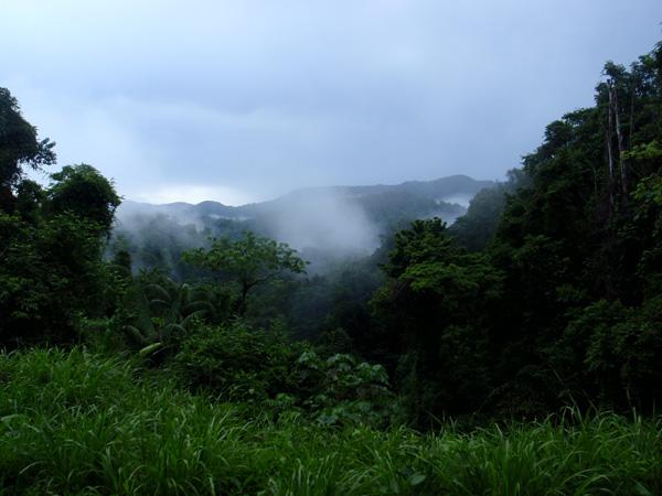 Trinidad 047