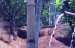 bandeau-09-01-12