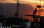bandeau-09-11-11