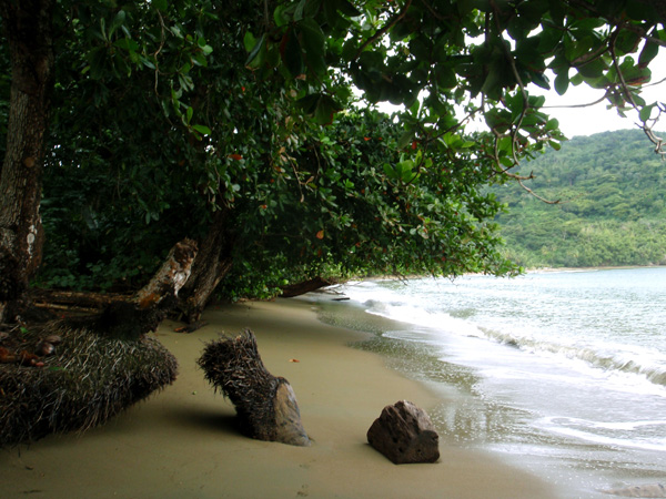 tobago-anse-bateau-kings-bay-016
