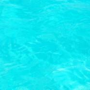 Ze Bahamas