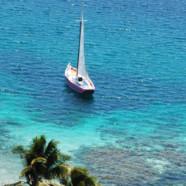 De retour aux Tobago Cays