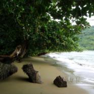 La plage qu'il nous faut